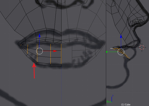 Blender Character Modeling 3 Of 10 : Turn on vertex selection mode and then adjust the lower