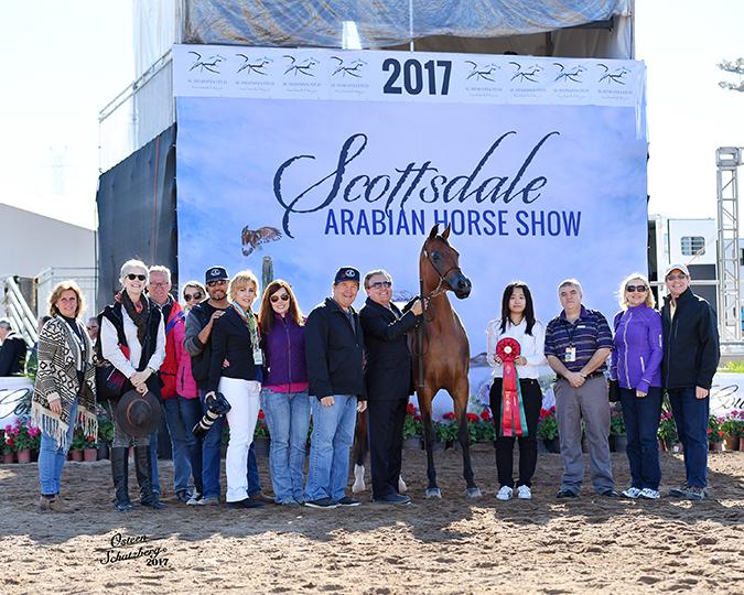 2017 Scottsdale Arabian Horse Show