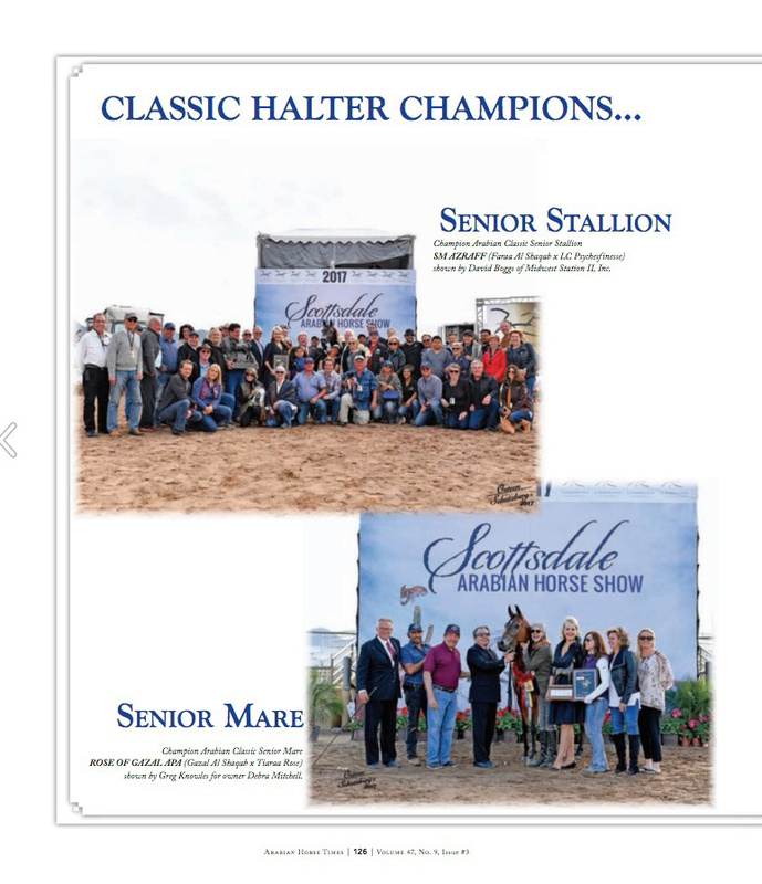 2017 Scottsdale Arabian Horse Show Halter Judges