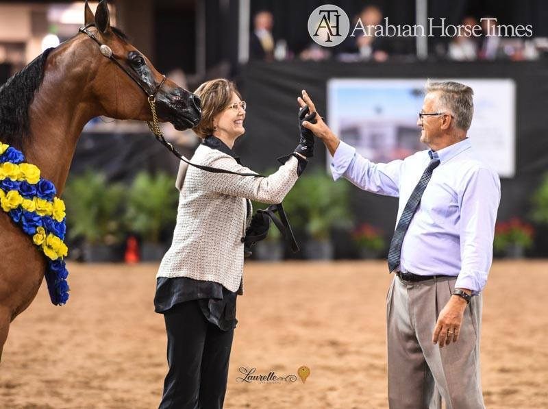 What a special moment!  Deb wins the ANBF Mares 10 and over AOTH class!  With some very tough competition.