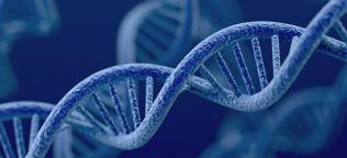 Epigenetics and genetics