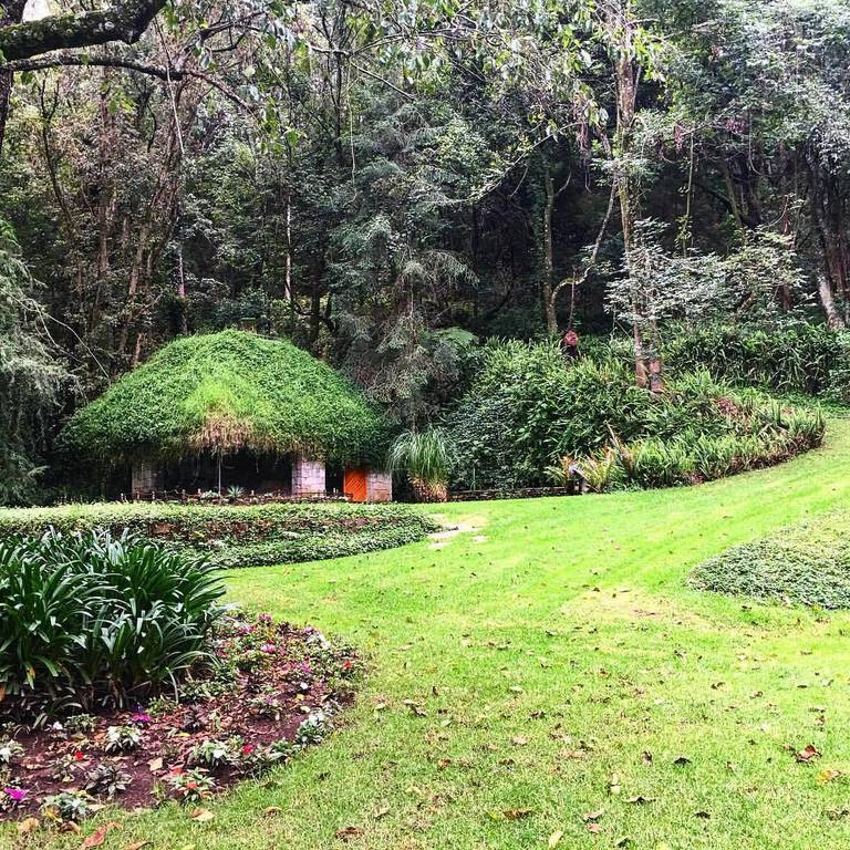 The enchanted gardens in Mexico - like a step back in time - or a secret visit to the shire from the hobbit.