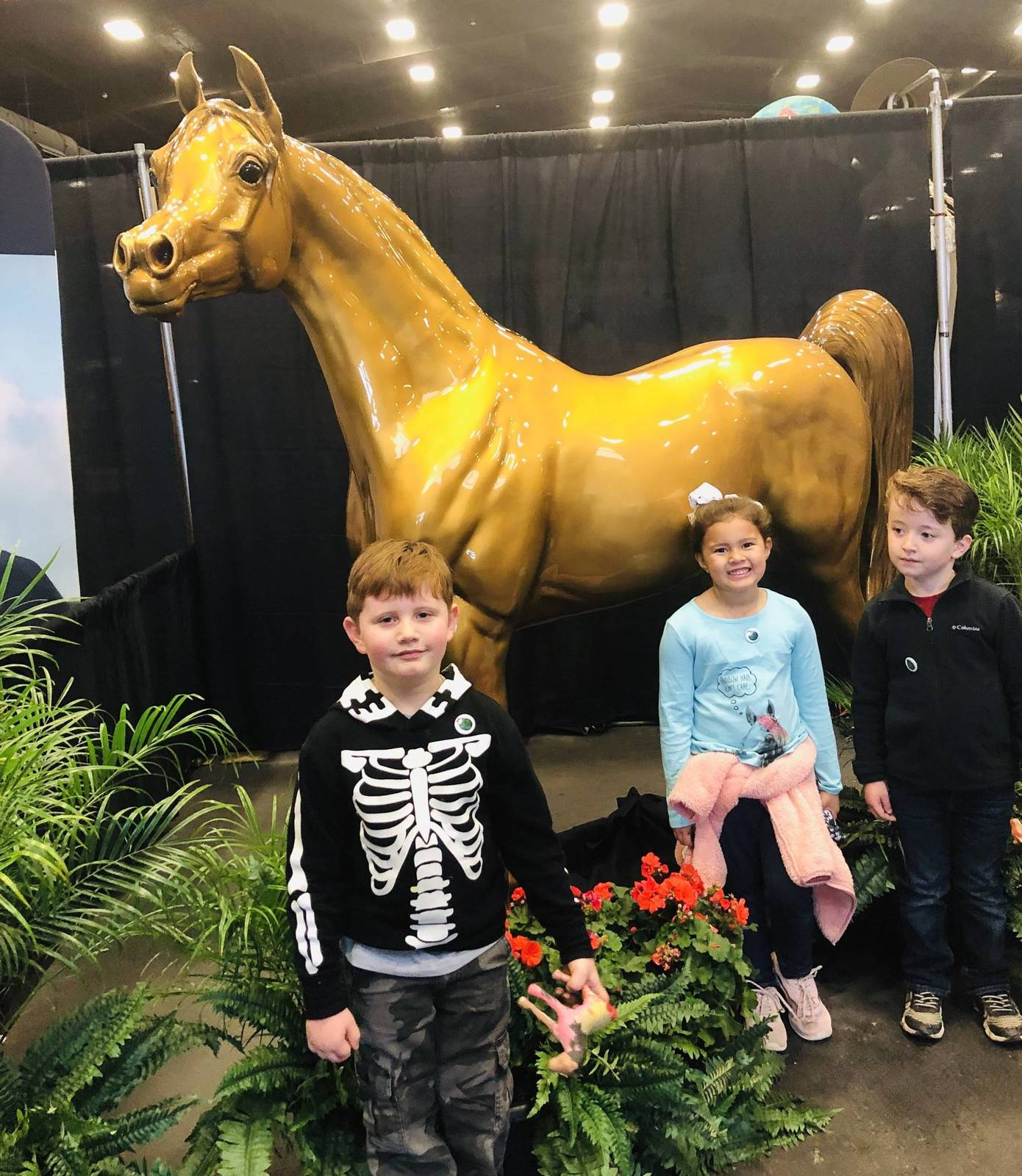 Fun times at the Scottsdale Arabian Horse Show 2019