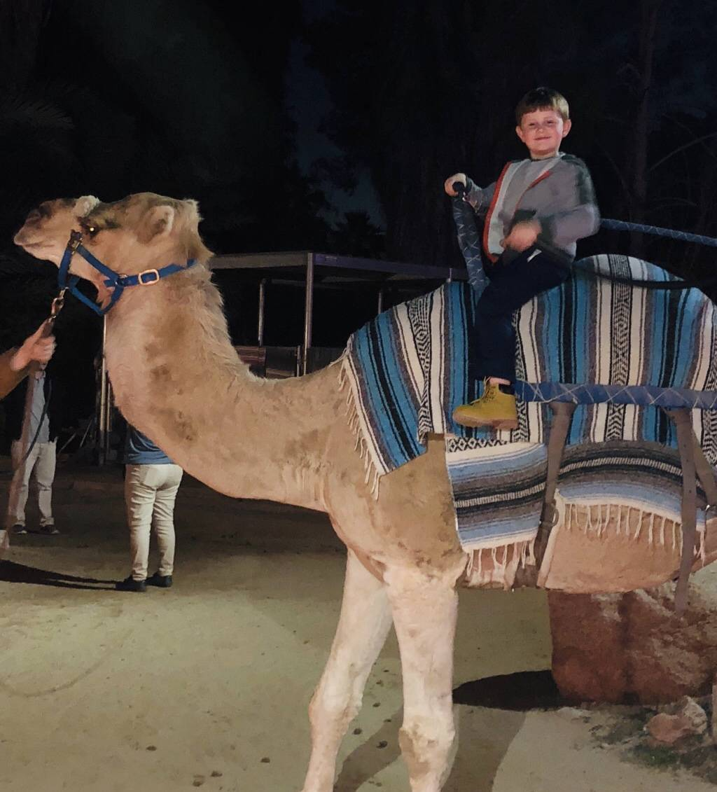 Chase & Camel Joe