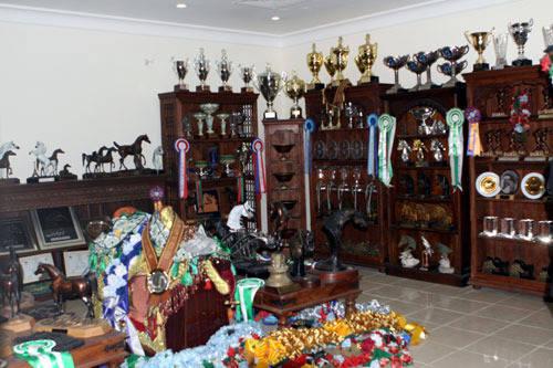 Trophy room at Ajman Stud