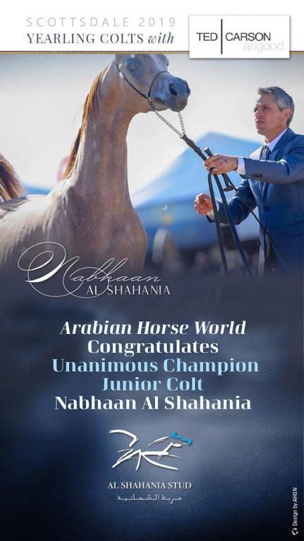Nabhaan Al Shahania
