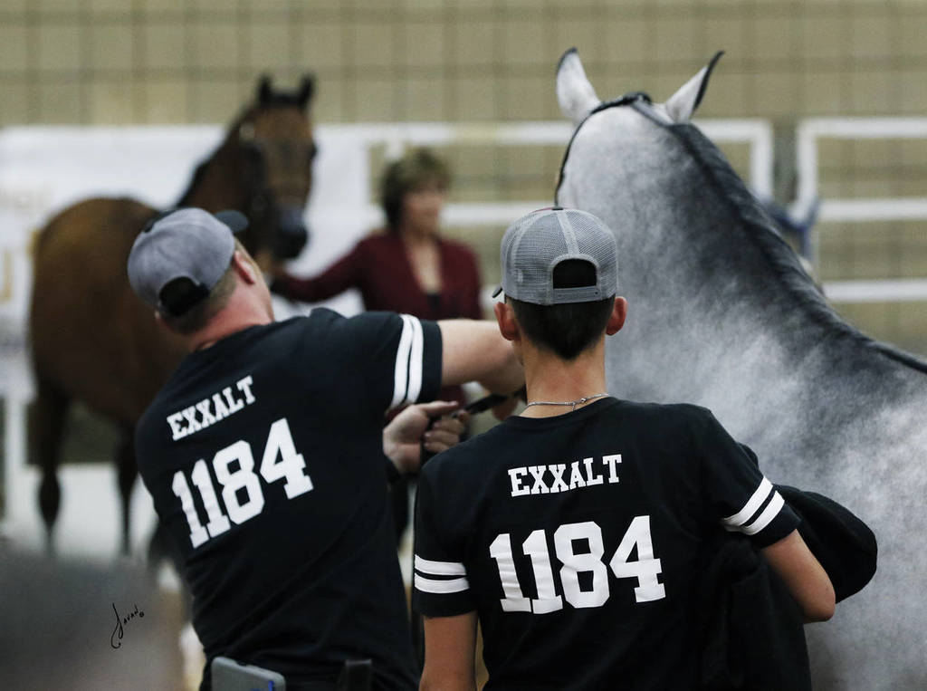 Fans of US National Champion Stallion, Exxalt