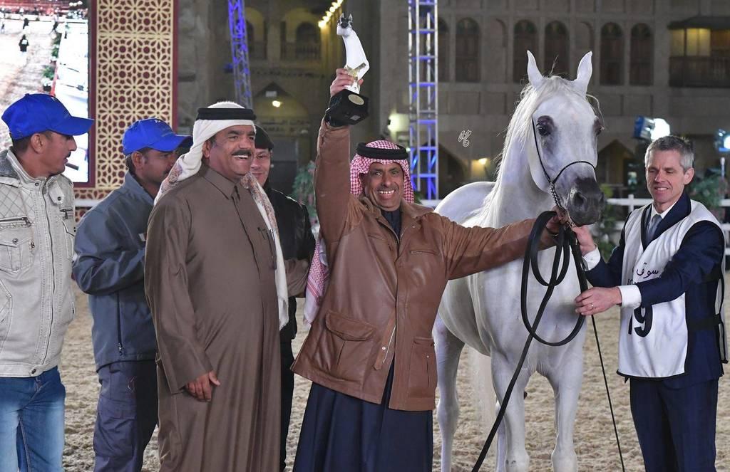 Sheikh Hamad, Al Shaqab