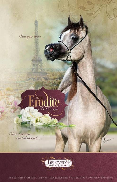 Om El Erodite