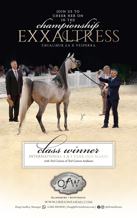 Exxaltress- Scottsdale International Class Winner