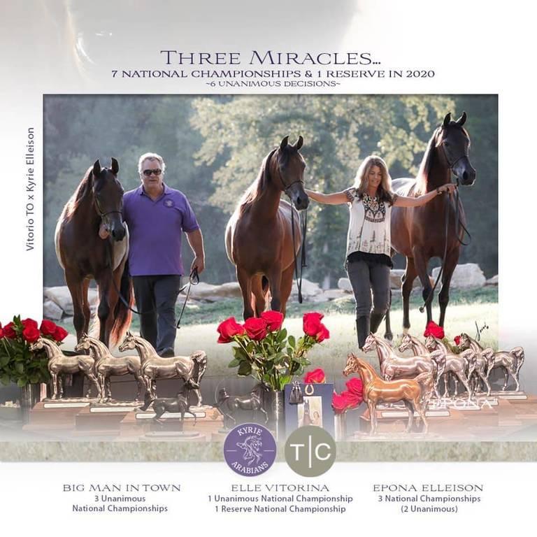 "Kyrie Arabians ""Three Miracles"" - US National Champions"