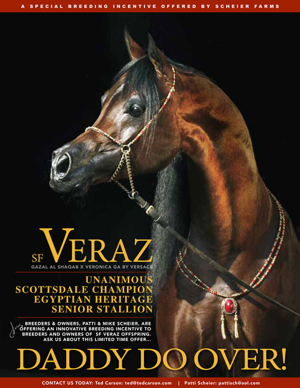 SF Veraz - Special Breeding Incentive