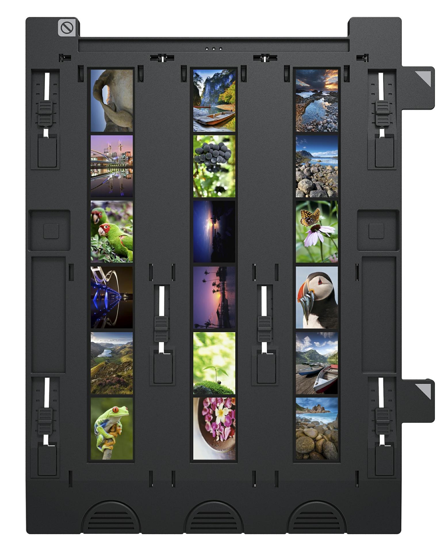 Epson Perf V800 Series_Slides 1