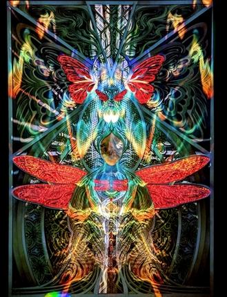 Metamorphosis - Light Harvest at Lightning in a Bottle 2