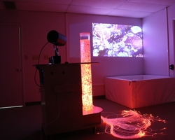 Epson LightScene Illuminates Multi-Sensory Environments