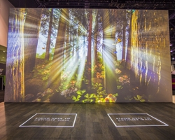 Four Creative Ways to Elevate In-Person Experiences with Digital Signage