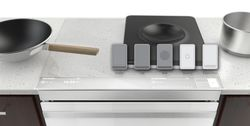 Induction Cooking Modules