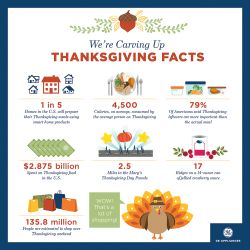 Thanksgiving Facts Infographic.