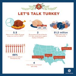 Thanksgiving Turkey Facts Infographic.