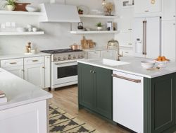 Kitchen_MatteWhite