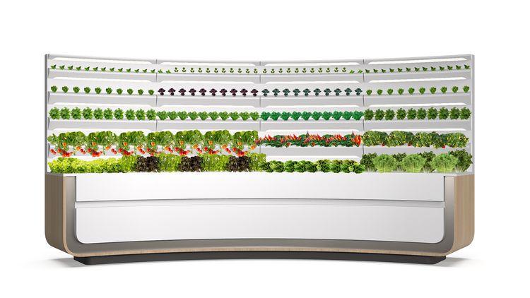 HomeGrown Kitchen Aeroponics Garden_CES 2020