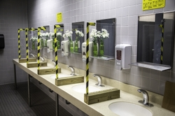 Solid Lexan barriers separate the sinks in the women's restrooms.