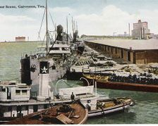 Galveston's Rosenberg Library to Exhibit Historic Postcards at The Tremont House