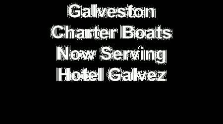 galveston charter boats july-10