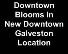 Downtown Blooms Opens in Downtown Galveston