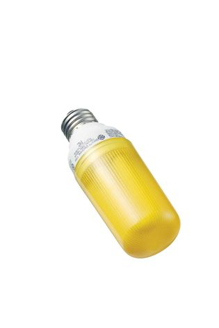 GE Bug Lite bulb