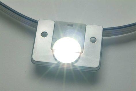 Tetra™ Power White XL