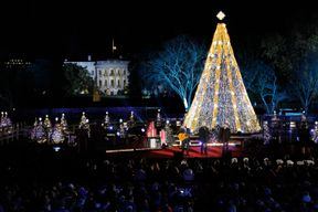 The 2015 National Christmas Tree