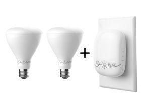 Reach + 2 BR30 Bulbs
