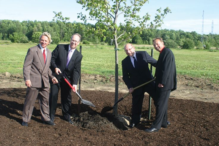 Planting tree outside Stratford Toyota
