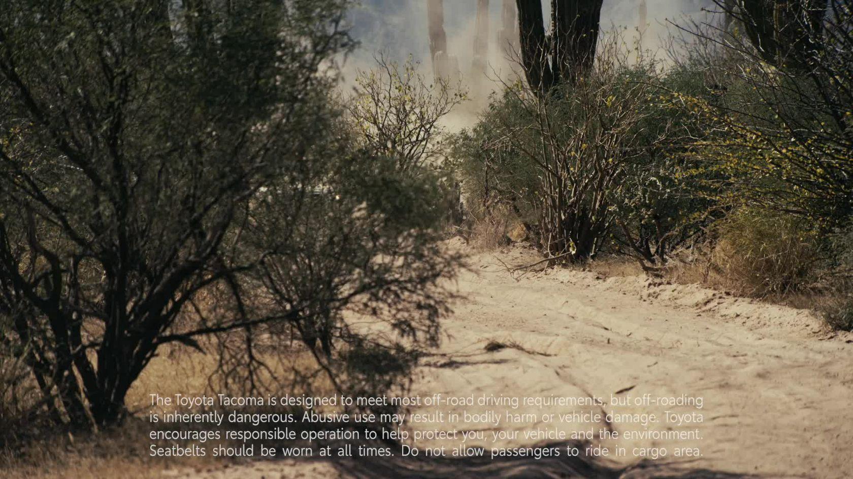 TRD Desert Air Intake