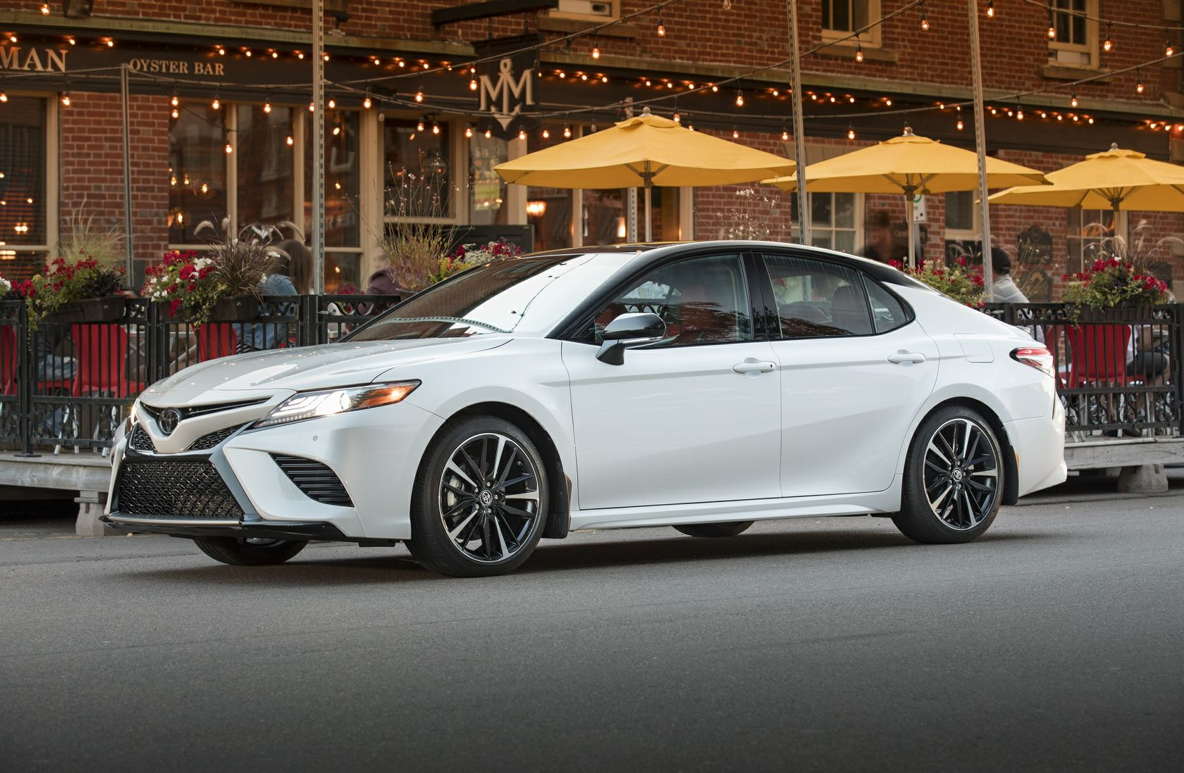Transform Your Drive In The 2019 Toyota Camry | Toyota Canada