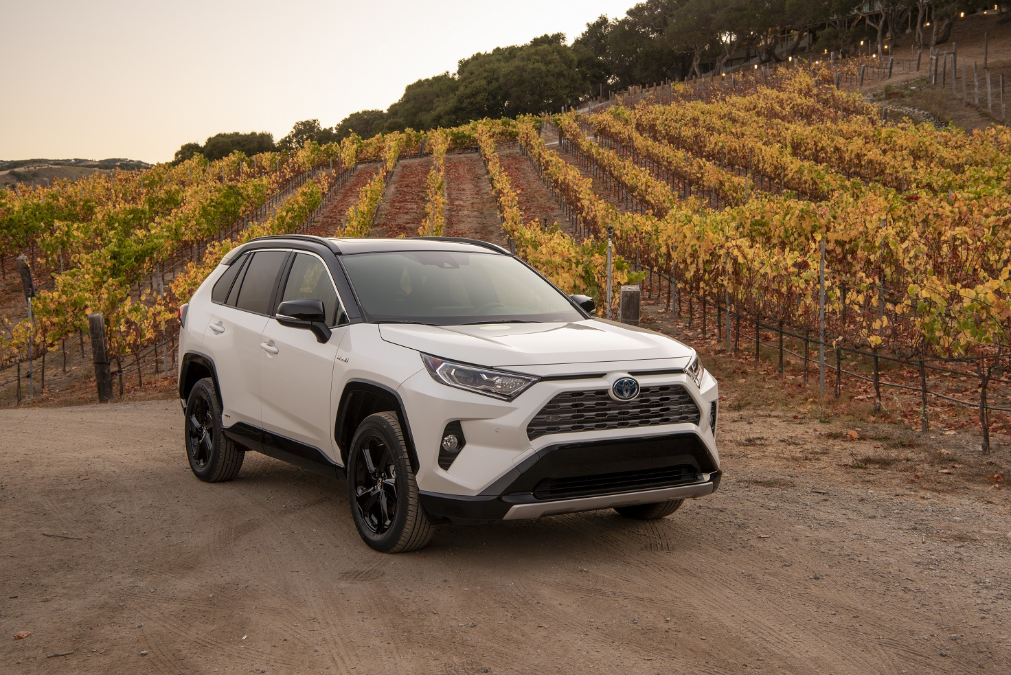 electrify your life with the all new 2019 toyota rav4. Black Bedroom Furniture Sets. Home Design Ideas