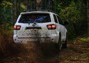 2020 Toyota Sequoia TRD Pro 14