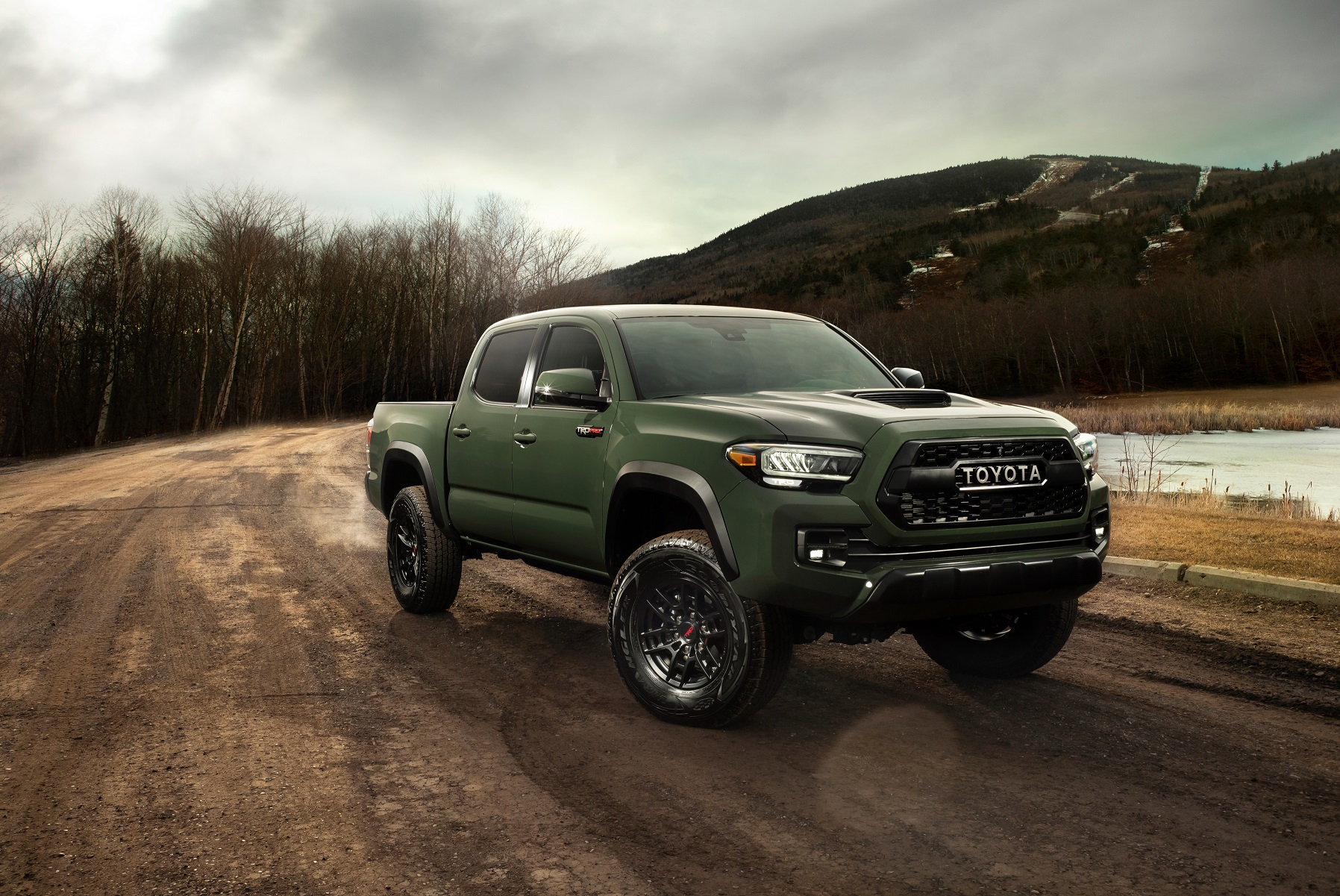 Image result for 2020 tundra army green