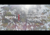 Toyota ECPDC – Environmental Sustainability