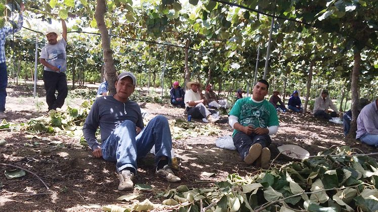 Electrical safety and farm workers