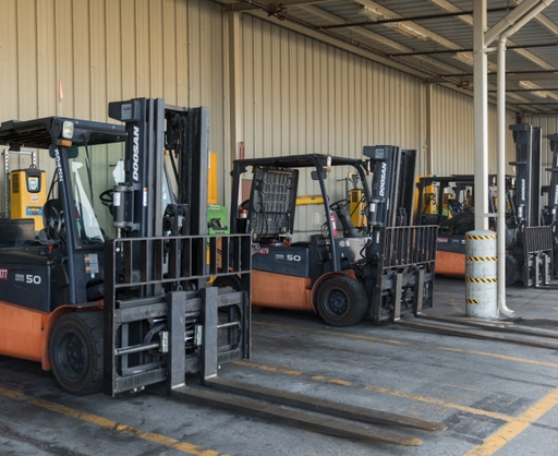 Row+of+forklifts_MarieHedrick_12-9-19