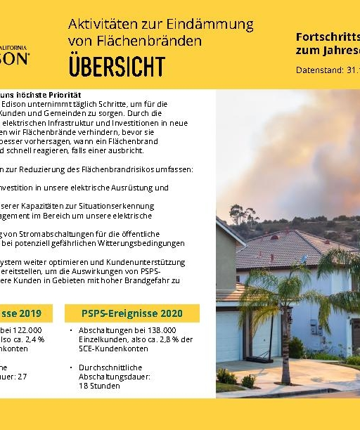 Wildfire Mitigation Progress by County Report 2020 Year-End (German)