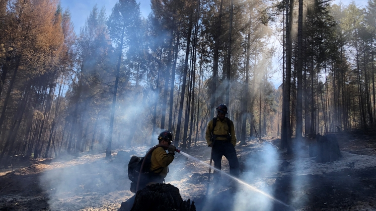 Forestry and Fire Recruitment Program graduates work on the Caldor Fire.