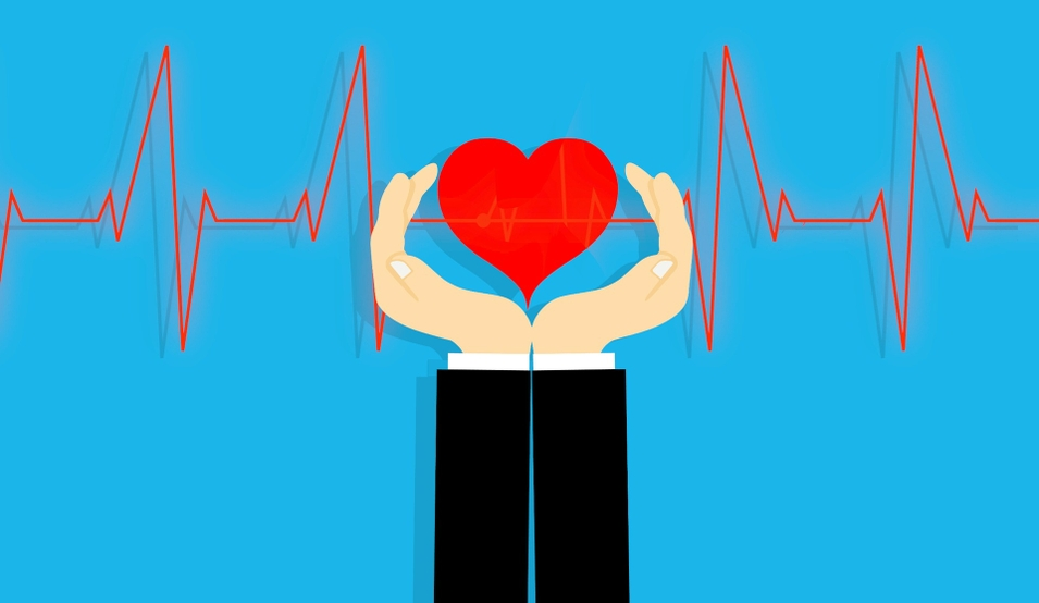 heart-4000934_1920
