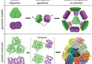 Click to open the large image: Creating the self-assembling molecular cage