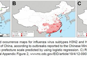 Bird flu and human flu in China
