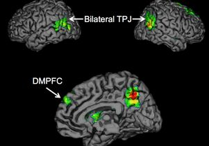 Click to open the large image: Brain regions TPJ and DMPFC