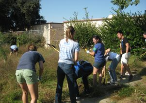 Click to open the large image: Gardening at Markham Middle School