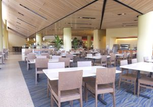 Inside Bruin Plate: main seating and salad bars